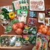 毎週の作り置き。今回購入した食材(野菜)と値段を紹介します。
